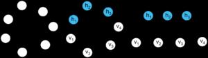 figure3 v4 - net evol
